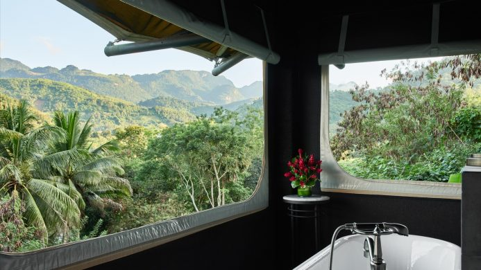 jungle foret tropicale cadeaux marques
